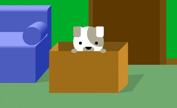 Cachorro en casa